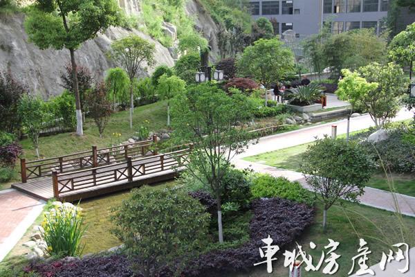 泰山·绿谷