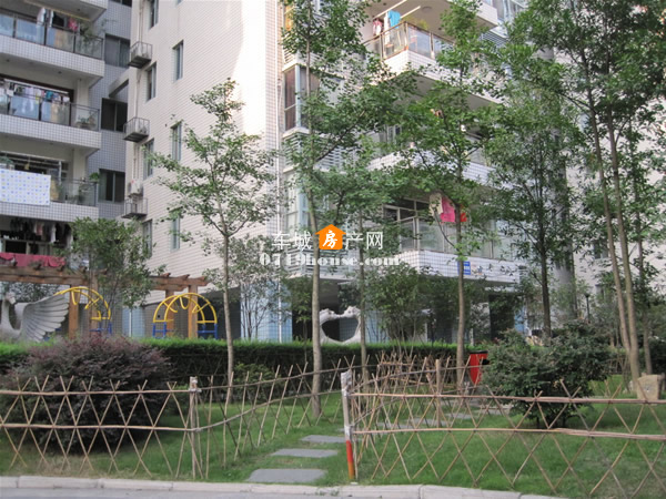 阳光花园实景图-4