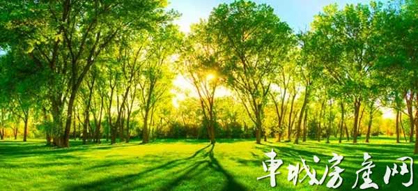 惠泽 公园一号 人生好风景,尽在我眼前