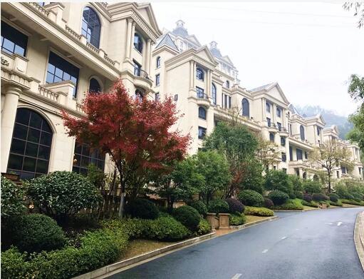 卢浮宫三期