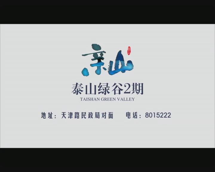 泰山绿谷2期宣传视频