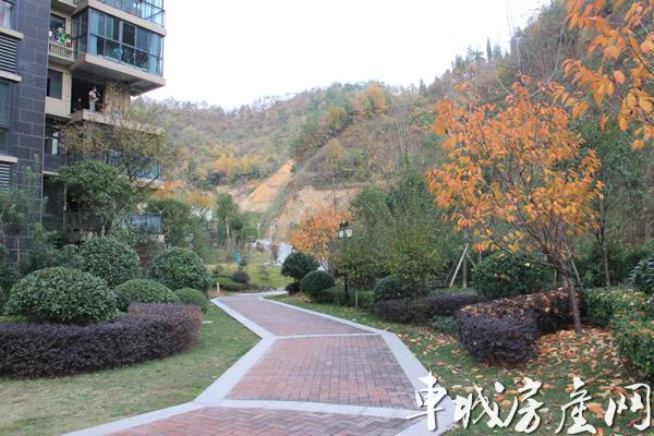泰山绿谷小区实景